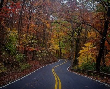 Magnetic Rd in Autumn
